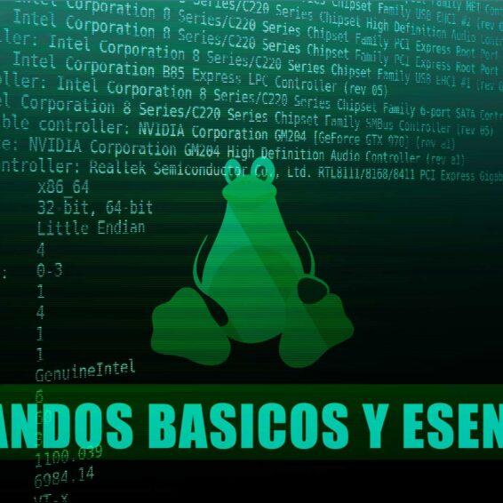 Comandos Básicos y Esenciales de Linux