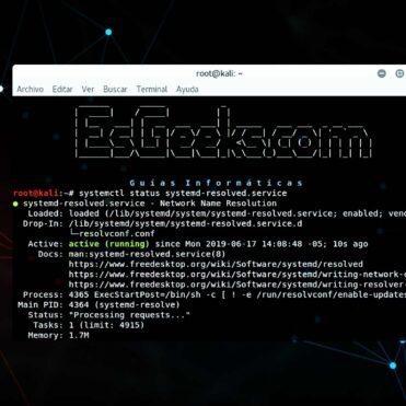 Limpiar el caché de DNS en Linux