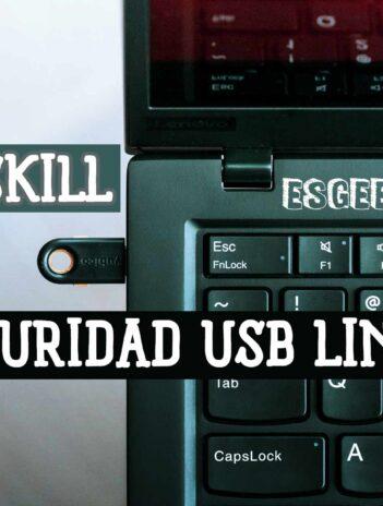 Buskill Seguridad Linux USB