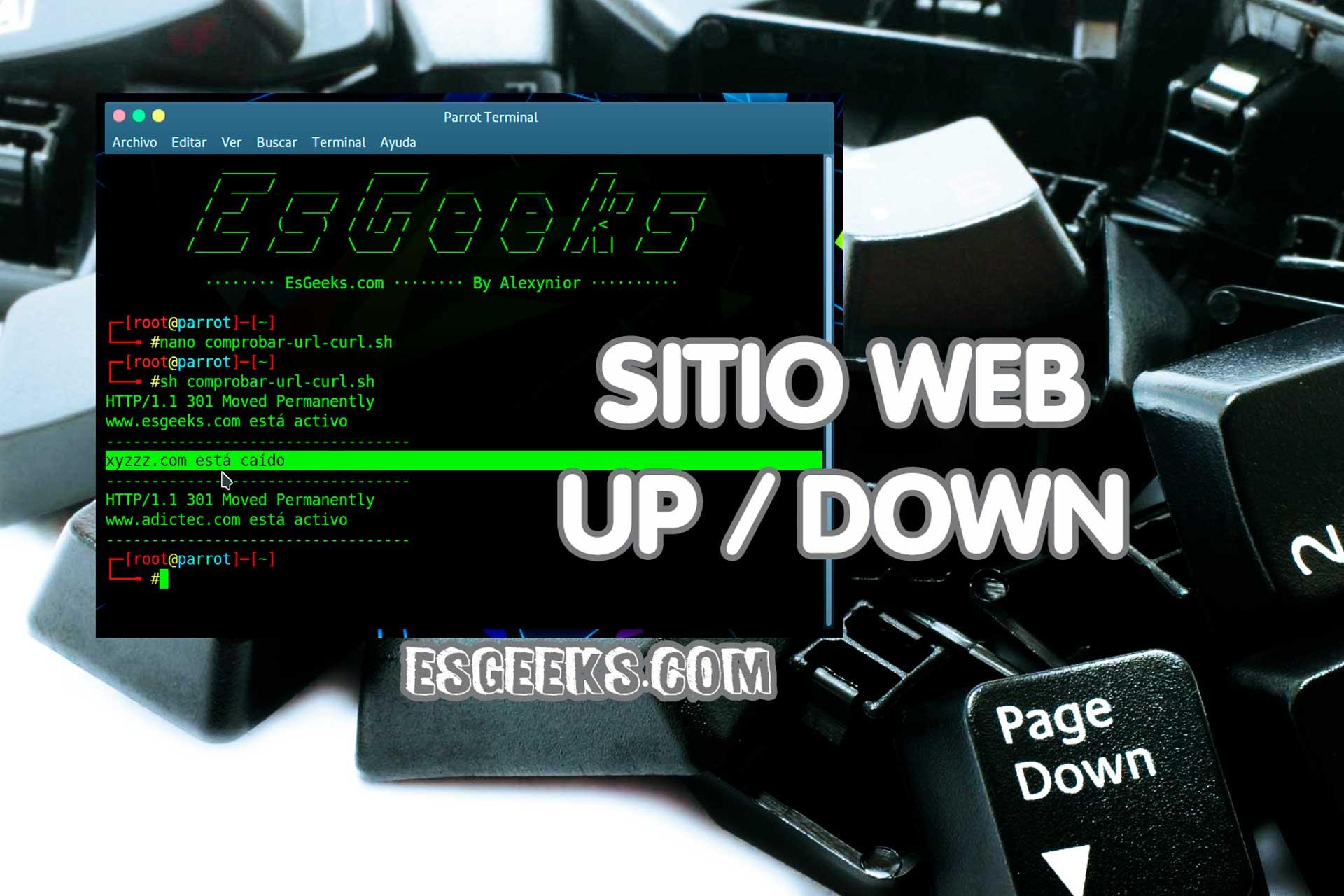 Comprobar sitio caído o activo desde terminal Linux