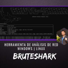 BruteShark Herramienta Análisis de Red