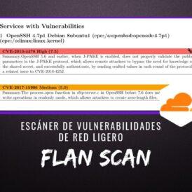 Flan Scan Escáner Vulnerabilidades Red Ligero