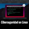 Ciberseguridad Linux Lo que Debes Saber