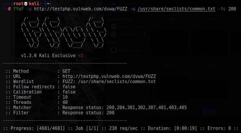 Filtro de código HTTP en ffuf