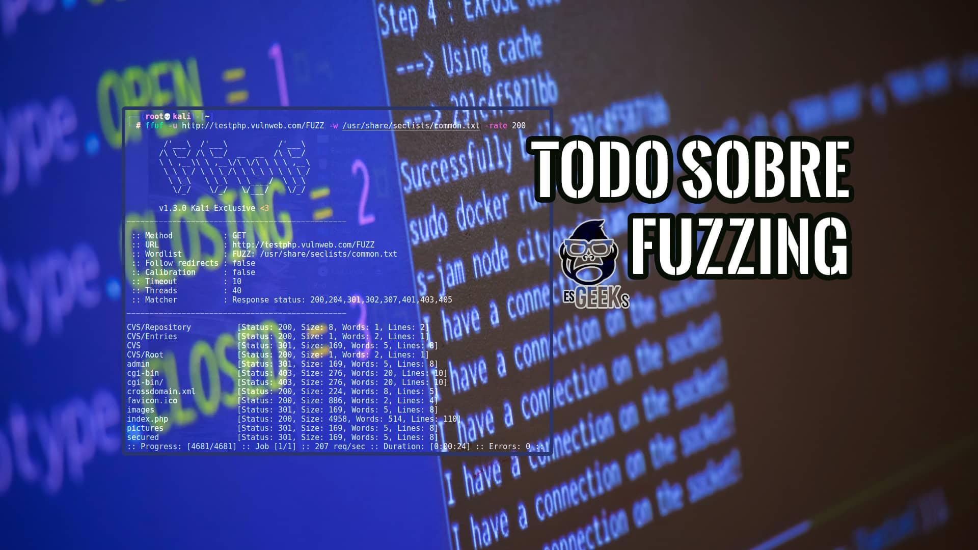 Todo sobre Fuzzing o Fuzz Testing